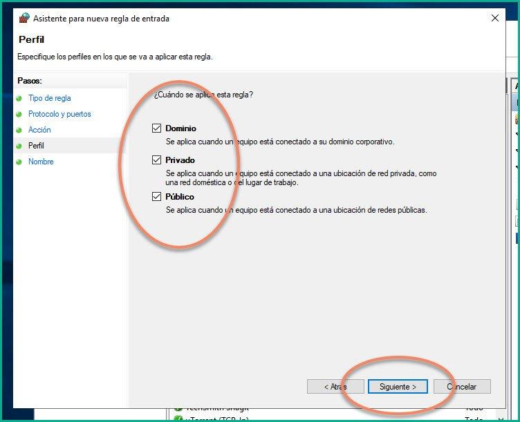 Abrir puertos en firewall Windows 10 (11)