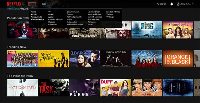 Netflix y sus categorias